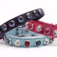 fancy designer dog collars