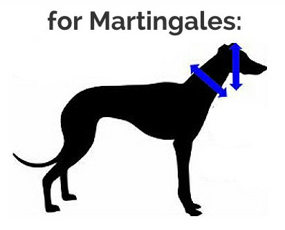 martingale greyhound dog collars