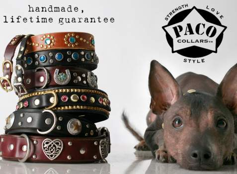 leather designer dog collars